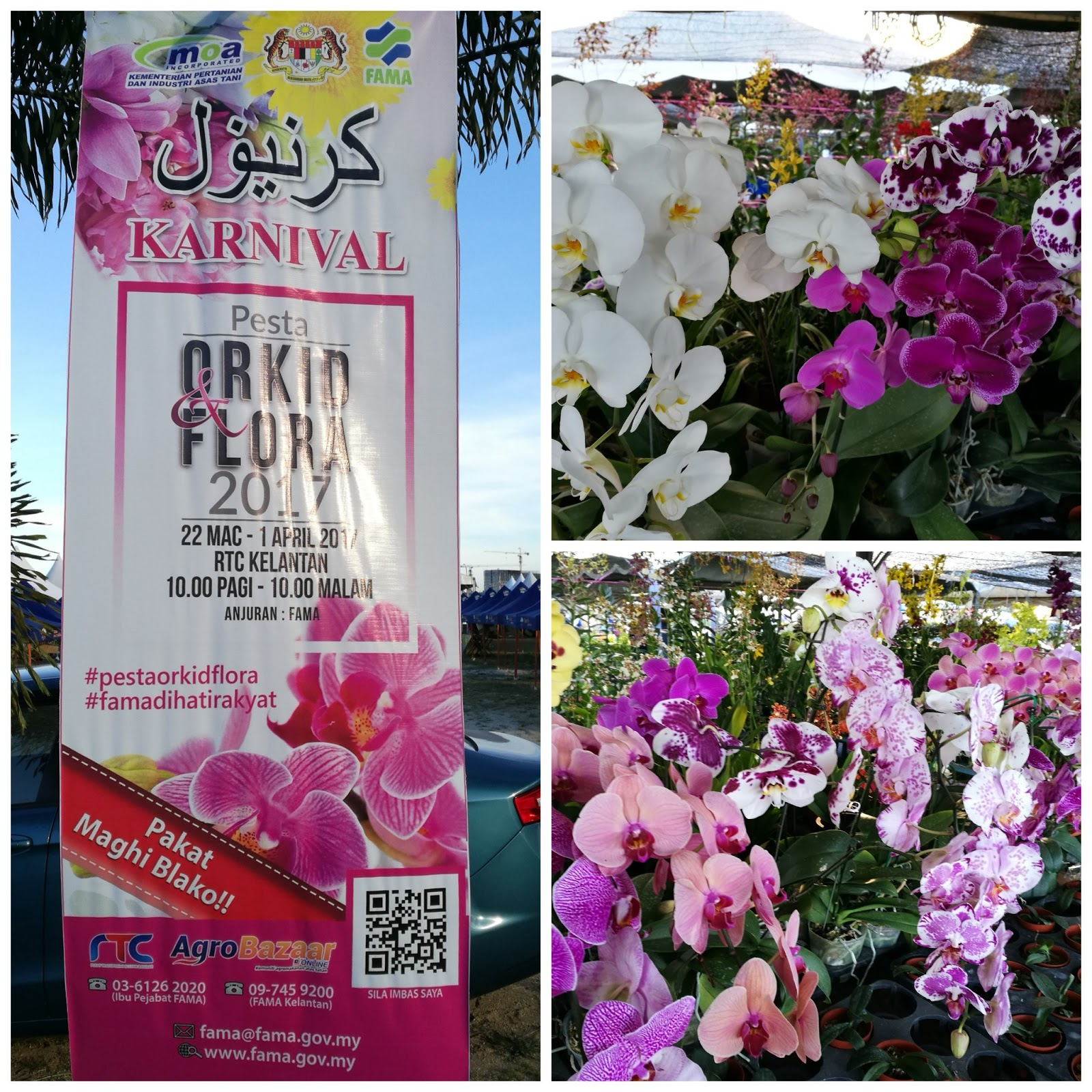 Kembara Minda 7 Pesta Orkid Flora 2017