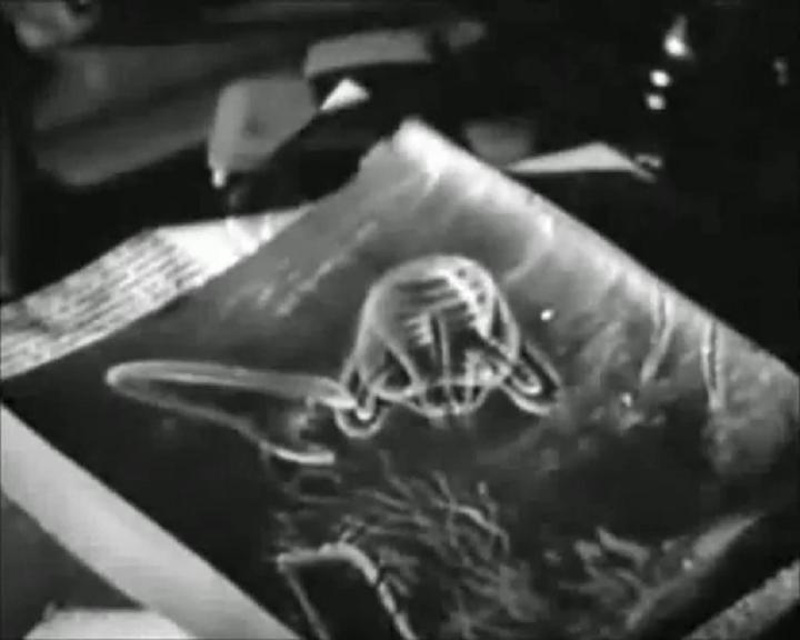 """size 40 ce36f b62b2 """"Caltiki  El Monstruo Inmortal"""" es un """"Film"""" italiano coproducido por  """"U.S.A."""" dirigido por los dos puntales del """"Fantastique"""" italiano  Riccardo  Freda y ..."""