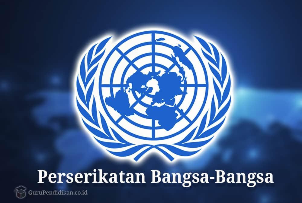 Pengertian PBB | Sejarah, Fungsi, Asas, dan Tujuan Dibentuknya PBB