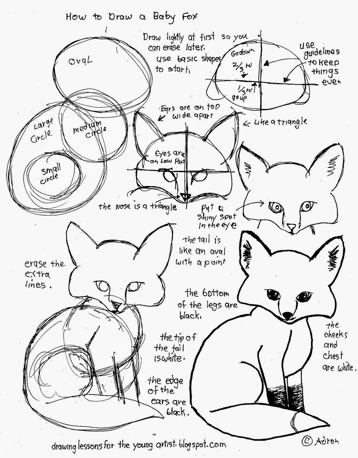 How to Draw Worksheets for The Young Artist How To Draw A Baby – Stone Fox Worksheets