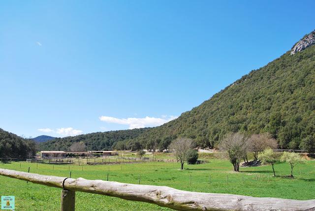 Vall d'en Bas en La Garrotxa