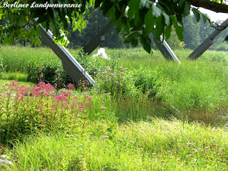 Britzer Garten Spätsommer