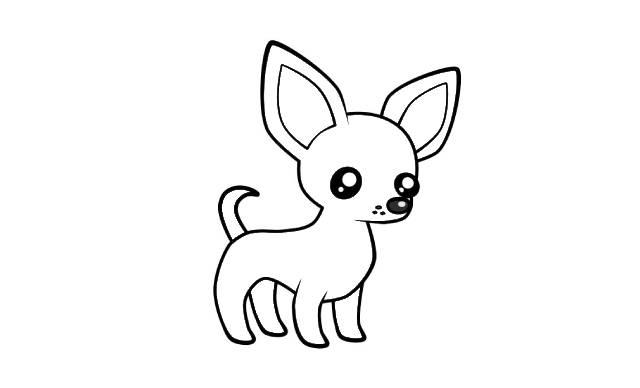 dibujos de perros chihuahua a lapiz