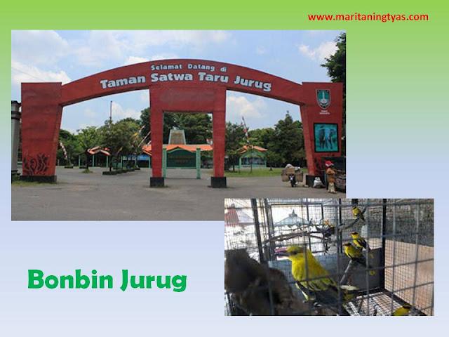 Bonbin Jurug Wisata Kota Solo