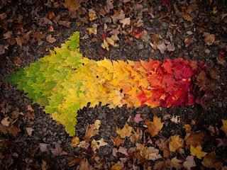 Ja nisam s ovoga sveta,pripadam rasi sanjara - Page 5 Autumn-spectrum-big