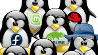 Distro Linux per diversi scopi utili anche se sul PC usiamo Windows