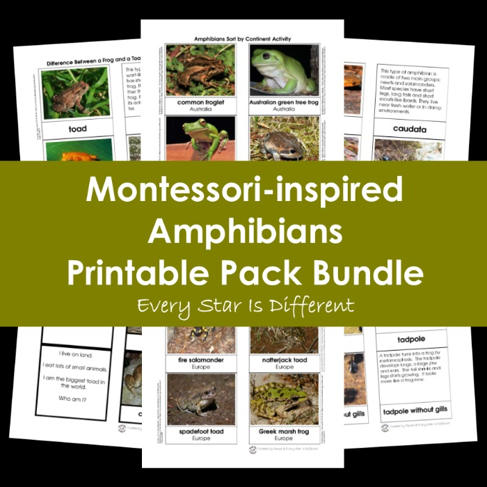 Montessori-inspired Amphibians Printable Pack Bundle