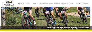 screen grab of  NEHSCA webpage