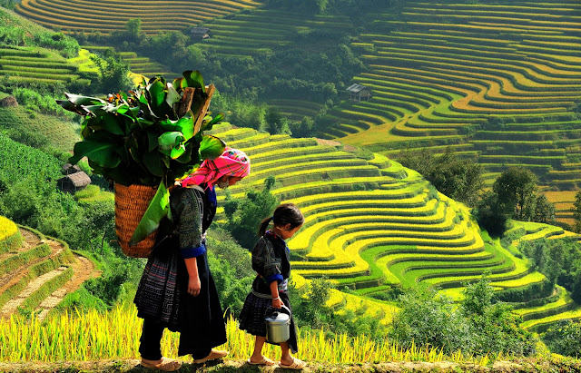 Top 8 Nice Places to Visit in Vietnam sapa