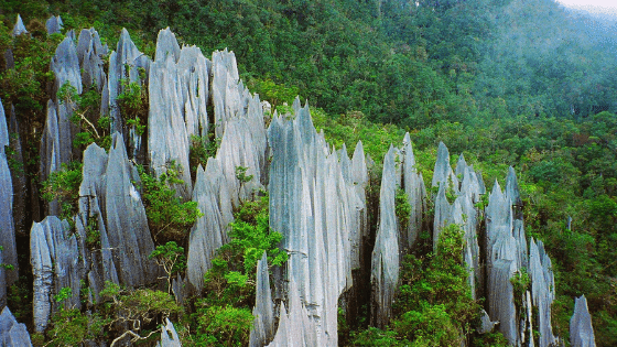 The limestone pinnacles of Mount Api at Gunung Mulu National Park.