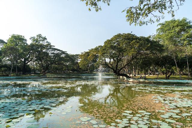 Lac Kandawgyi-Yangon-Myanmar-Birmanie