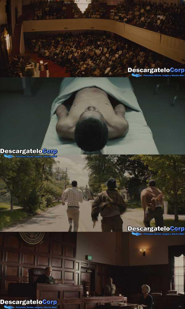 Descargar Selma HD 720p Latino