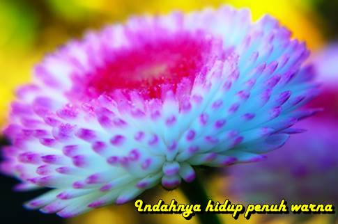 9 Point Penting Nasehat Syekh Abdul Qodir Jailani kiat jitu www.kiatjitu.com