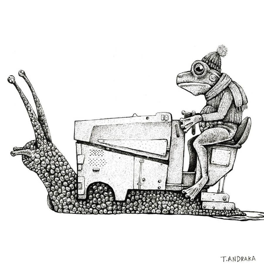 07-Snail-and-frog-Zamboni-Tim-Andraka-www-designstack-co