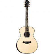 dan guitar Taylor PS14E