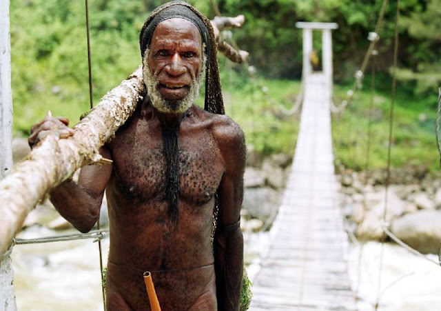 Genetic 'trace' in Papuan genomes suggests two expansions out of Africa