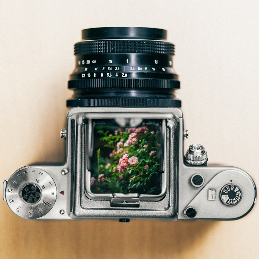 Fotografi Landscape  cocok dengan kamera Medium Format