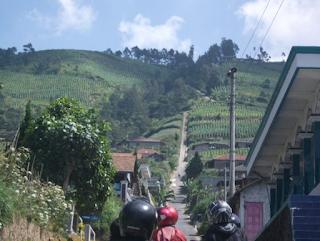 Jalur Pendakian Gunung Merapi - Desa Selo