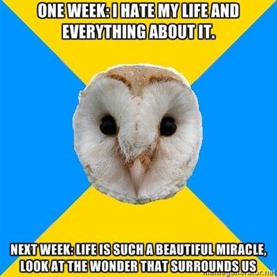 bipolar owl depression vs mania