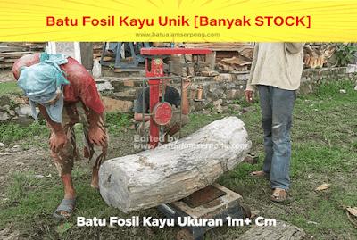 batu fosil kayu ulin asli