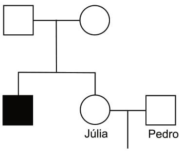 A genealogia ilustra essas informações