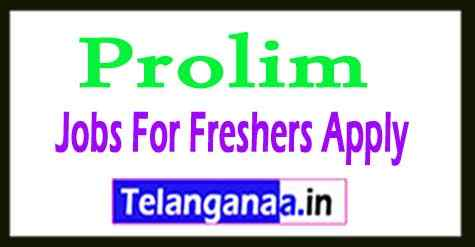 Prolim Recruitment Jobs For Freshers Apply