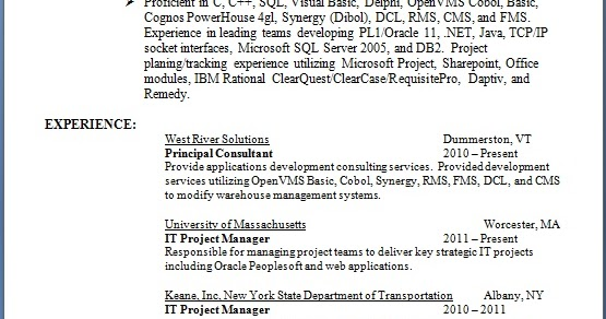 IT Project Manager Resume Creative Format In Word Free Download
