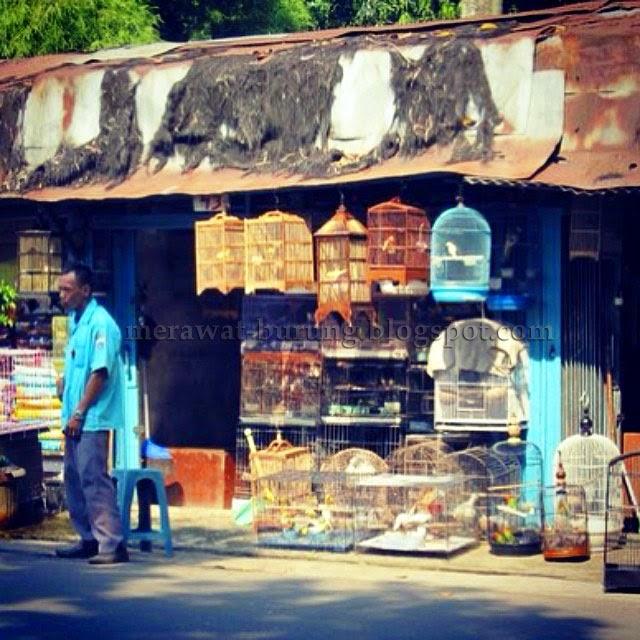 pasar burung di jakarta