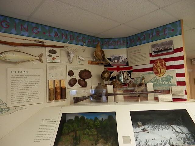 Display at Nature Center