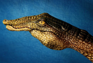 Amazing Hand Paintings Crocodile