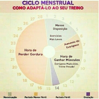 Ciclo menstrual - como adapta-lo ao treino