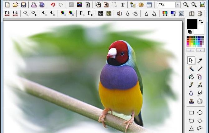 Siti per modificare foto online gratis for Siti per arredare casa online