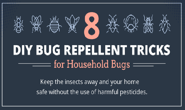Make Your Own Bug Repellent #infographic