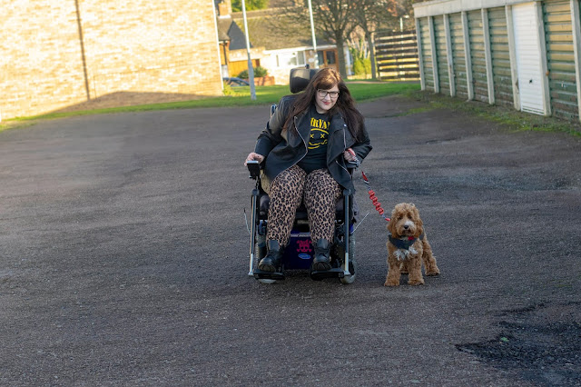 Woman sat in powerchair holding lead of red and white cockapoo puppy