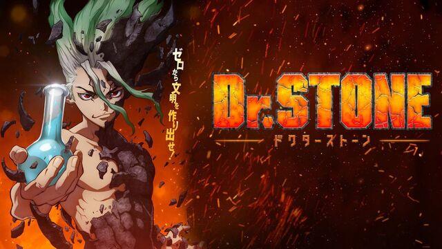 Dr. Stone Manga 213