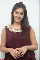 Nikki Galrani in a Brown Shining Sleeveless Gown at Nakshatram music launch ~  Exclusive 083.JPG