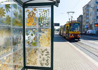 украсена със сухи цветя и инкрустирана в билбордове, като гигантски хербарий