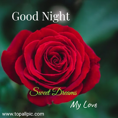 wishes Good Night Sweet Dreams My Love  for whatsapp