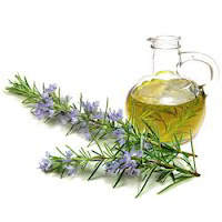 Foliage with small purple flowers by a glass bottle with a handle - the elements of Rosemary Oil