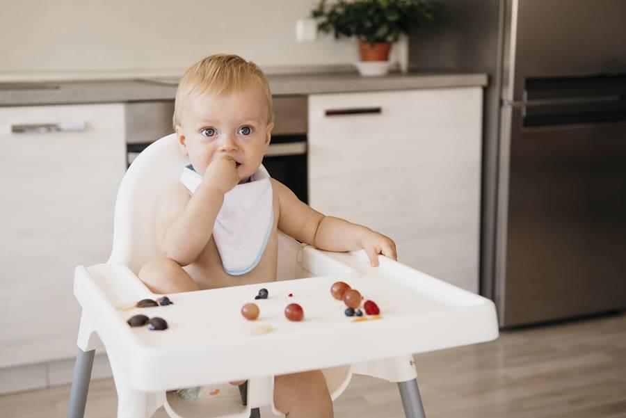 Primeras comidas del bebé