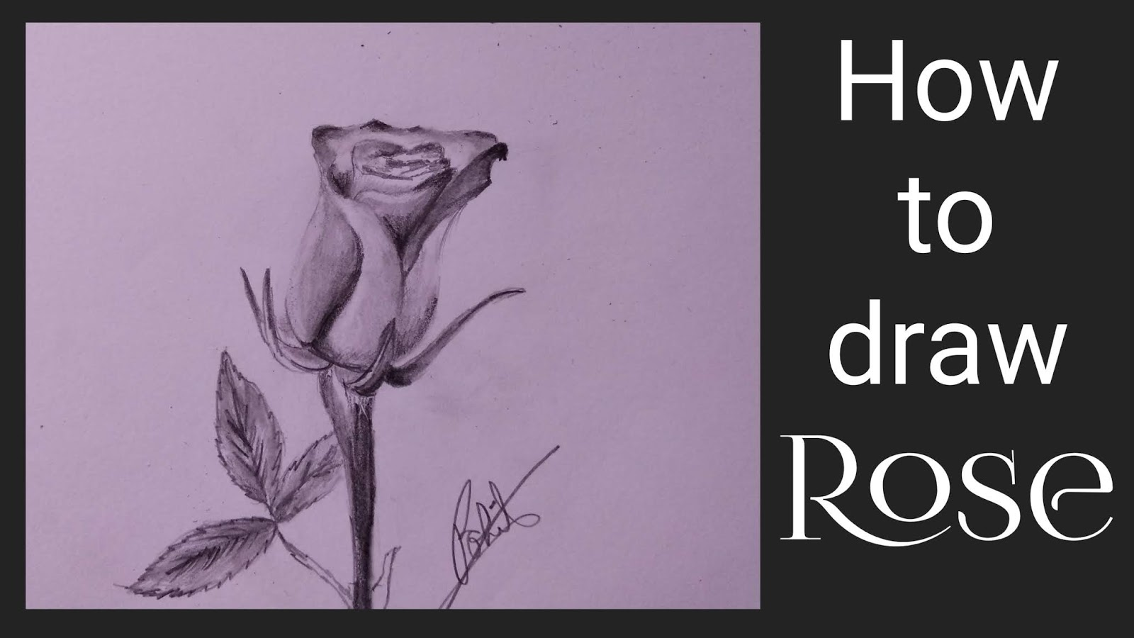 How to draw rose step by step tutorial rose drawing rose drawing with