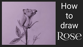 How to draw Rose ,step by step tutorial, Rose drawing, Rose drawing with pencil, how to draw Rose with pencil ,how to draw rose step by step of rose, rose drawing for begginers,