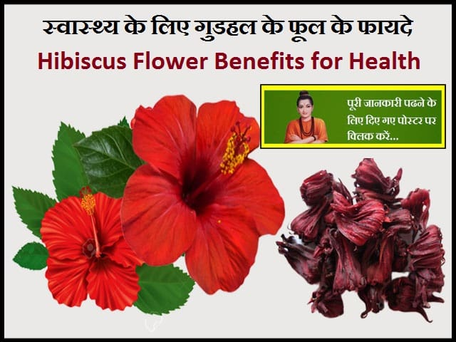 Hibiscus Flower Benefits for Health-स्वास्थ्य के लिए गुडहल के फूल के फायदे