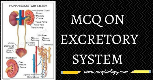 MCQ on Excretory Products and their elimination