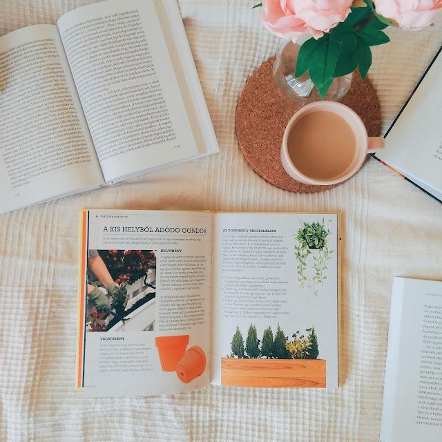Kay Maguire – Kiskertek kiskönyve [Egyszerű ötletek erkélyre, ablakpárkányra és egyéb kültéri helyekre]