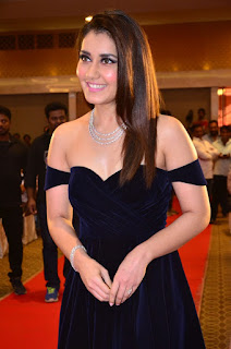 Raashi Khanna at avakusa audio launch 22.jpg