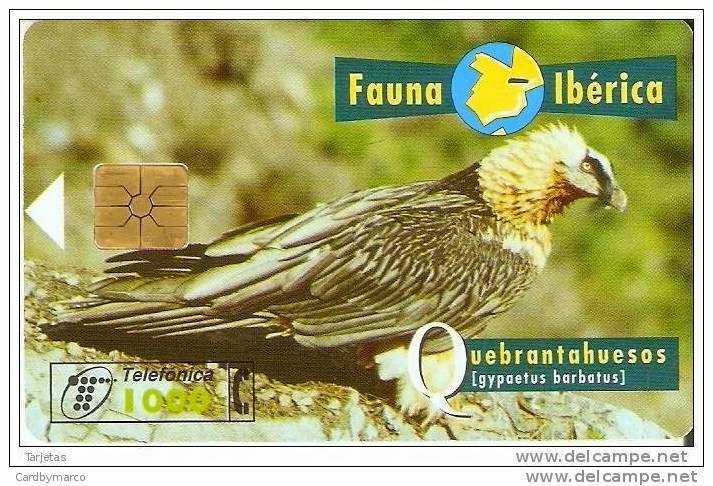 Tarjeta telefónica Quebrantahuesos (Gypaetus barbatus)