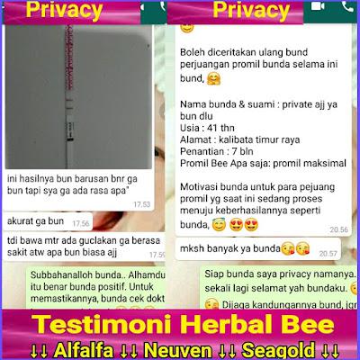 Herbal bee