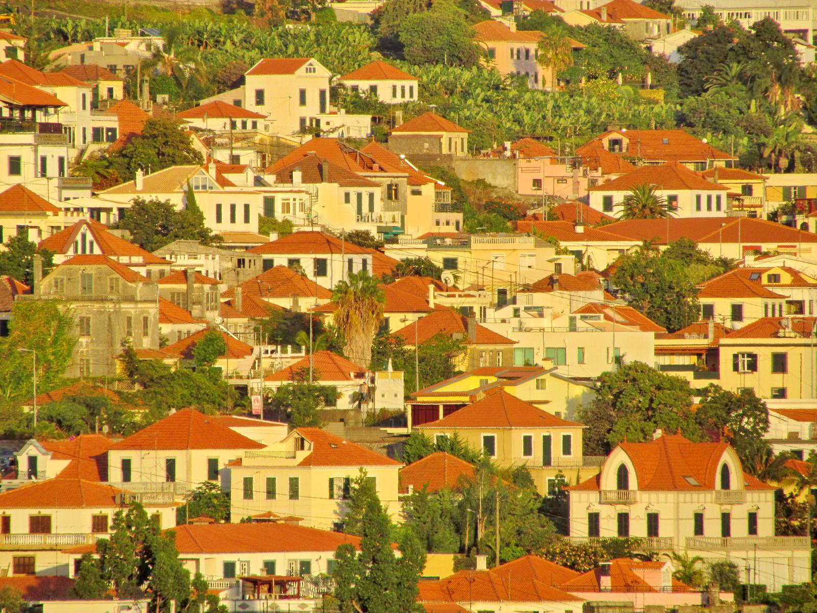 Funchal houses
