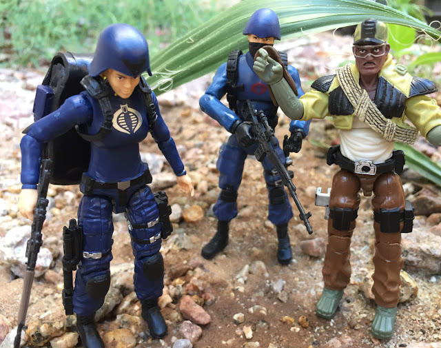 2016 female Cobra Officer, Toys R Us Exclusive, 50th Anniversary, Alpine, 2014, Cobra Trooper